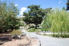 Neu angelegter botanischer Garten