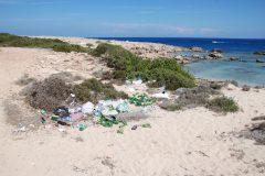 Auch die Küste bleibt nicht vom Müll verschont.